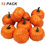 Coolrunner 12 Pack Artificial Fruits, Realistic Fall Mini Artificial Pumpkins, Home Kitchen Halloween Christmas Decoration - Orange