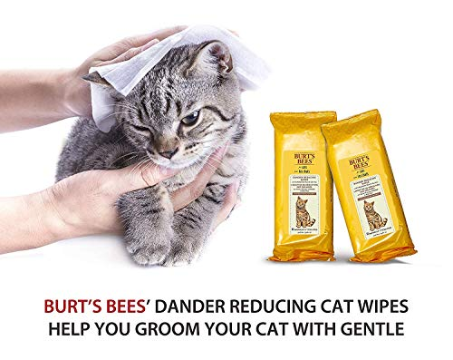 Burt's Bees for Cats Natural Dander Reducing Wipes | Kitten and Cat Wipes for Grooming | Cruelty Free, Sulfate & Paraben Free, pH Balanced for Cats - Made in The USA - 2 Pack