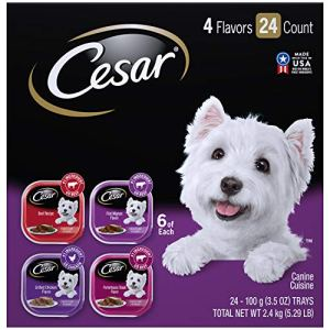 Cesar Gourmet Wet Dog Food Variety Packs - 24 Trays 4