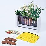 HSP Nature Toys Root Vue Farm Set