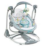 Ingenuity ConvertMe Swing-2-Seat Portable Swing - Ridgedale