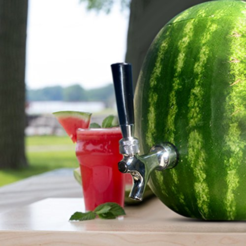 Blazin Watermelon Tap - Brass and Chrome Keg Kit - Pumpkin Fruit Ice Tea Drink Dispenser