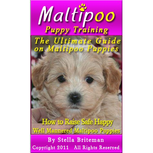 Maltipoo Puppy Training: The Ultimate Guide on Maltipoo Puppies, How to Raise Safe, Happy, Well Mannered Maltipoo Puppies