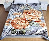 Ramano Collections Korean Style Mink Blanket 10 Lbs Heavy King Size Reversible Raschel Quality Thick Warm Plush Soft Embossed 2 Ply Gray Flower...