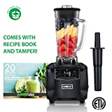 GoWISE USA GW22503 Streamline High-Performance 2 Horse Power Professional 67-Ounce Pitcher and Tamper + 20 Blender Recipe Book (1450W, BLACK