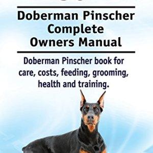 Doberman-Pinscher-Dog-Doberman-Pinscher-book-for-costs-care-feeding-grooming-training-and-health