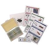 WhizKidsLab 12 Prepared Insect Bug Parts Microscope Slides Set + Real Beetle Specimen + Postcards STEM Science Kit