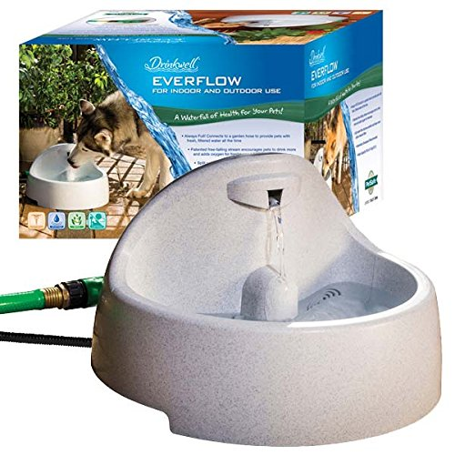 PetSafe Drinkwell Everflow Indoor/Outdoor Dog and Cat Water Fountain, Pet Drinking Fountain, 192 oz. Water Capacity