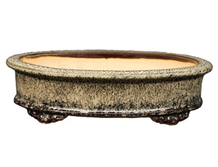 YUKIMONO Namako Glazed Oval Bonsai Pot, 7.5-Inch