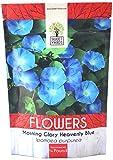 Morning Glory Seeds Heavenly Blue - Bulk 1/4 Pound Bag - Over 4,000 Fresh Flower Seeds