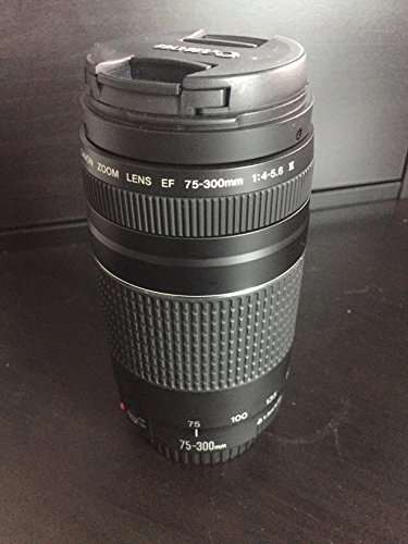 Canon EF 75-300mm f/4-5.6 III Zoom Lens Canon EOS 7D, 60D, EOS Rebel SL1, T1i, T2i, T3, T3i, T4i, T5i, XS, XSi, XT, XTi Digital SLR Cameras + Micro Fiber Cleaning Cloth