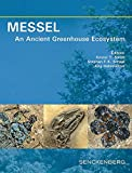 MESSEL - An Ancient Greenhouse Ecosystem