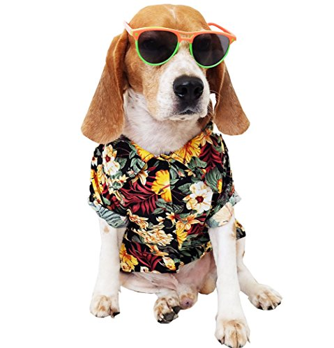 Runncha Shop Summer Camp,Pet Dog Shirts,Clothes,Costumes, S, M, L, Colorful, Apparel, Hawaiian styles, Colorful Flowers Hawaiian shirts 1