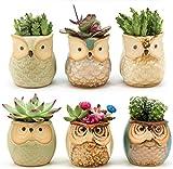 Weierken Mini 6PCS Owl Pot Ceramic Flowing Glaze Base Serial Set Succulent Plant Pot Cactus Plant Pot Flower Pot Container Planter Bonsai Pots with A Hole