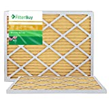 FilterBuy 18x30x1 MERV 11 Pleated AC Furnace Air Filter, (Pack of 2 Filters), 18x30x1 – Gold