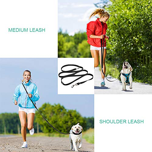 oneisall Hands Free Dog Leash,Multifunctional Dog Training Leads,8ft Nylon Double Leash for Puppy,Small & Large Dogs 5