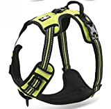 Chai's Choice Best Outdoor Adventure Dog Harness (Large, Green)