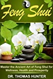 Feng Shui: Master the Ancient Art of Feng Shui for Wellness, <a href='http://myinfoweb.com/health/' target='_blank' data-recalc-dims=