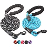 BAAPET 2 Packs 5 FT Strong Dog Leash with Comfortable Padded Handle and Highly Reflective Threads for Medium and Large Dogs (Black+Blue)