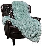 Chanasya Super Soft Shaggy Longfur Throw Blanket | Snuggly Fuzzy Faux Fur Lightweight Warm Elegant Cozy Plush Sherpa Microfiber Blanket | for Couch Bed Chair Photo Props - 50'x 65' - Aqua Turquoise