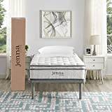 """Modway Ultimate Quilted Pillow Top 10"""" Jenna Twin Innerspring Mattress - Individually Encased Pocket Coils - 10-Year Warranty"""