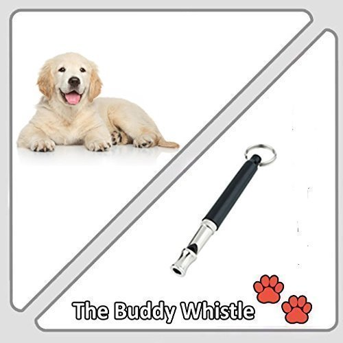 Train Your Dog To Obey You Every Time Using This Adjustable High Pitch Dog Whistle! 1
