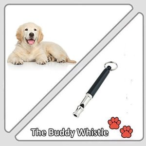 Train Your Dog To Obey You Every Time Using This Adjustable High Pitch Dog Whistle!