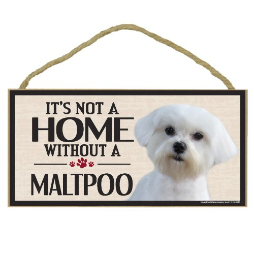 Imagine This Wood Sign for Maltipoo Dog Breeds