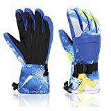 LANYI Winter Ski Gloves Waterproof Snow Proof Touchscreen Thermal Insulated Gloves for Men Women Snowboard Outdoor Cold Weather Warmest Gloves (Blue)