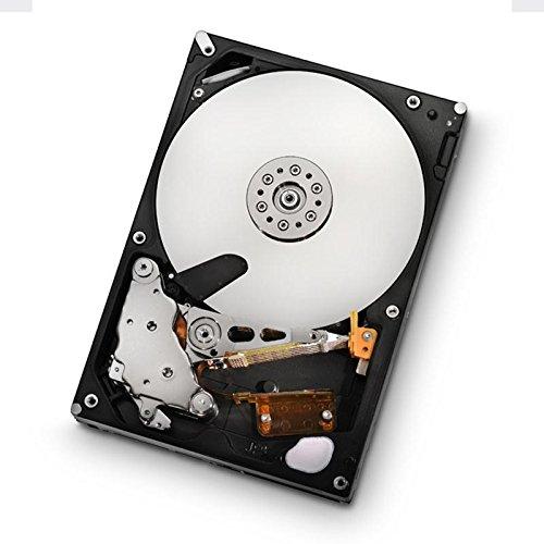 HGST Ultrastar HUS723030ALS640 3TB 7200RPM SAS 6Gbps 3.5' 64MB Cache Enterprise Internal Bare or OEM Hard Disk Drives