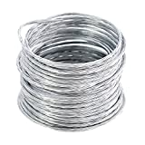 HomeDone Picture Hanging Wire 100-Feet, Supports up to 20 lbs