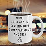 New Apartment Housewarming Gifts, Funny Gift Idea For New Renters, First Time Renting, Moving In, Moving Out At 18, Adulting Gift