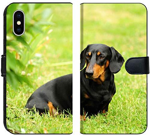 ] iPhone X Flip Fabric Wallet Case Image ID: 29679769 Nice Little Black Dachshund Photo Shoot