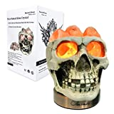 Omonic Himalayan Salt Lamp Lights, 3D White Gray Grey Tatoo Halloween Skull Carved Statue Lamp Night Light with Himalayan Pink White Salt Chunks, Dimmer Switch Control with 1 Salt Candle Holder