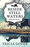 Beside Still Waters: A Big Sky Novel