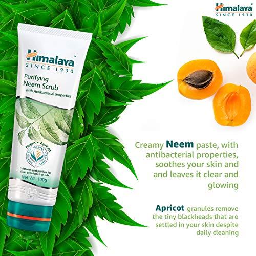 51UbPrNdFbL Himalaya Herbals Purifying Neem Scrub, 100gm