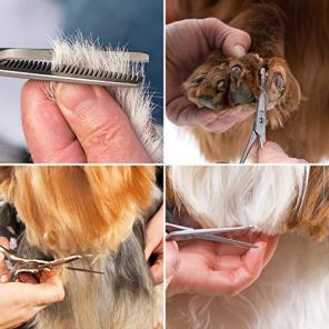 J-Bonest-8PCs-Stainless-Steel-Dog-Grooming-Scissors-Kit-Heavy-Duty-Pet-Grooming-Trimmer-Set-with-Thinning-Straight-Curved-Shears-Comb-for-Large-Small-Dog-Long-Short-Curly-Hair
