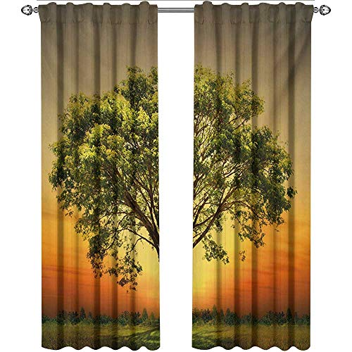 shenglv Landscape, Window Treatments Curtains Valance, Sunset Scenery in a Valley with a Big Old Tree Artwork Photo, Curtains Girls Bedroom, W72 x L108 Inch, Marigold Fern Green and Grey