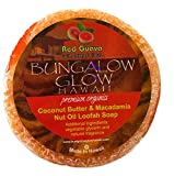 Bubble Shack Hawaii Bungalow Glow Coco Loofah Soap (Red Guava)