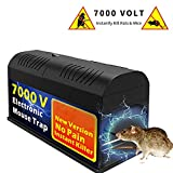 Big-Fun Electronic Defense Box, High Voltage Effective Powerful Poison Free Humane Electric (1 Pack)