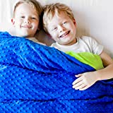 Harkla Weighted Blanket for Kids (5lbs, Twin Size) - Gift for Children That weigh 30 to 40-pounds - Price Includes Duvet Cover & Weight