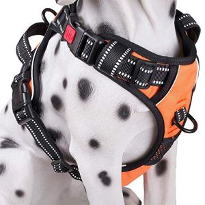 PoyPet No Pull Dog Harness, [2018 Upgraded] Reflective Vest Harness with Front & Back 2 Leash Attachments and Easy Control Handle for Small Medium Large Dog