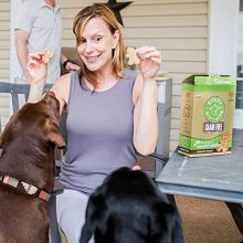 Buddy-Biscuits-Oven-Baked-Grain-Free-Crunchy-Treats-for-Dogs