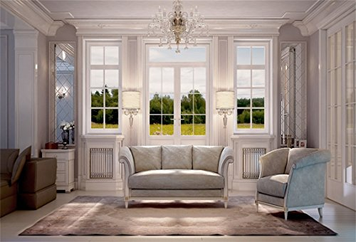 CSFOTO 7x5ft Interior Design Backdrop Interior Room Decoration Photography Background Classic Design Sofa Carpet Crystal Chandelier Window Home House Decoration Adults Photo Studio Props Wallpaper