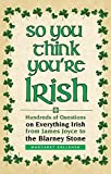 So You Think You're Irish: Hundreds of Questions on Everything Irish from James Joyce to the Blarney Stone