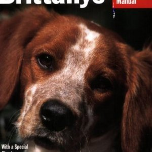 Brittanys (Complete Pet Owner's Manual) 8