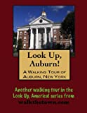 A Walking Tour of Auburn, New York (Look Up, America!)