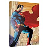 Superman City Watch Canvas Wall Art With Back Board