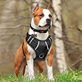 TIANYAO Dog Harness No Pull Reflective Oxford Material Soft Pet Vest Adjustable for Large Dogs Easy Control Harness with Dog Collar (XL, Black)