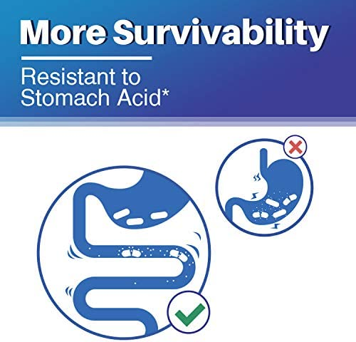 Surebounty Probiotic with Prebiotic, Delayed Release Technology, Shelf Stable, 60 Billion CFU 19 Strains, for Digestive & Immune Health, 60 Vegetarian Capsules, Non-GMO, Gluten Dairy & Soy Free 2